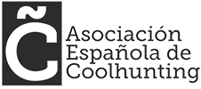 Logo AECoolhunting Footer